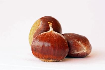 Jinbao Chestnuts