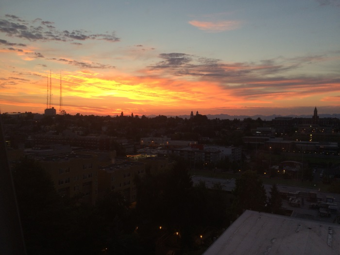 Sunset from the 8th floor of the dorms.