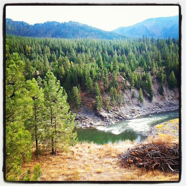 Alberton Gorge on the Clark Fork River | Montana
