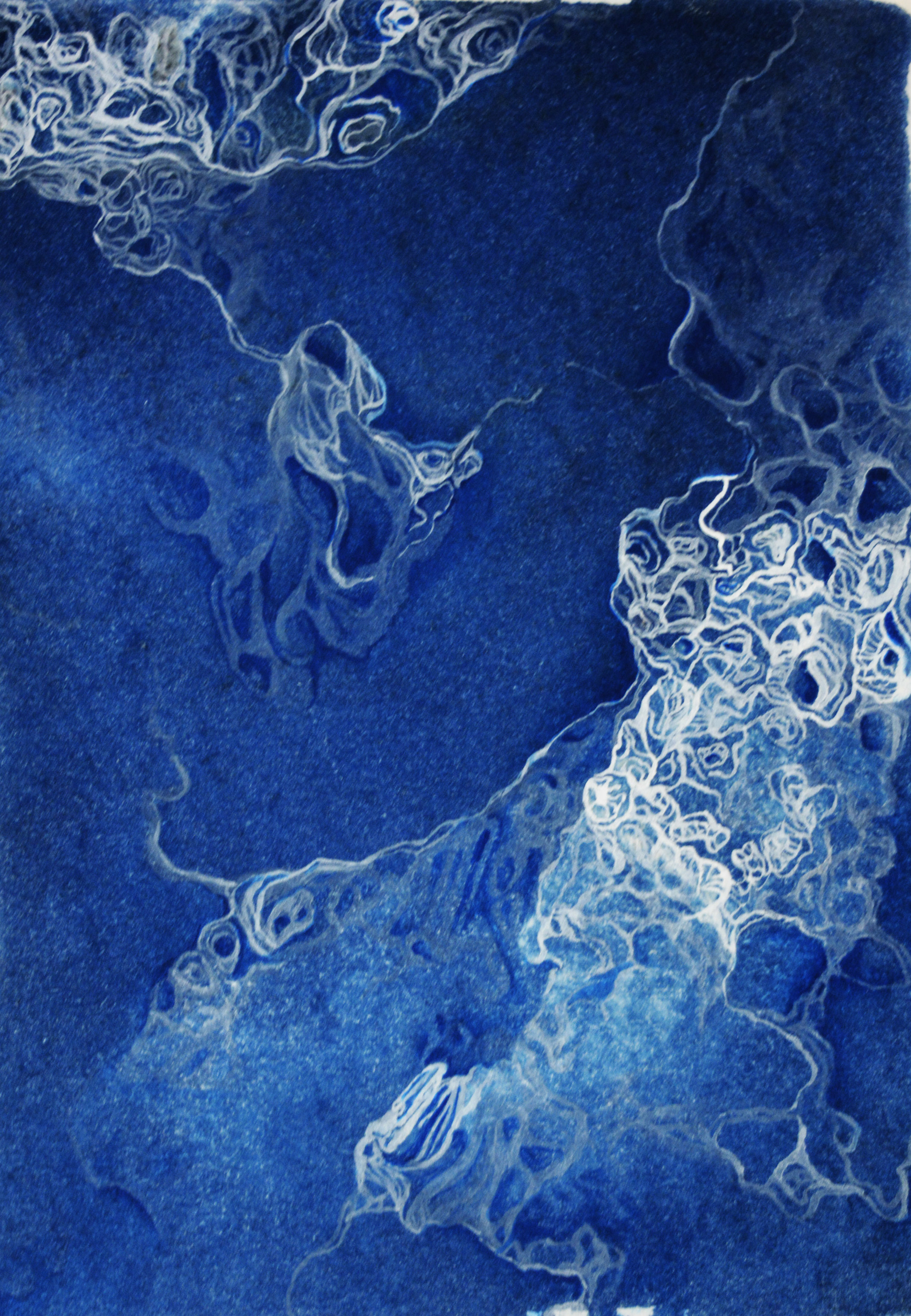 elaine camlin - Camlin_Elaine_Mapping Growth_2018_cyanotype and gouache on BFK Rives_2018_11cm x 14cm.jpg