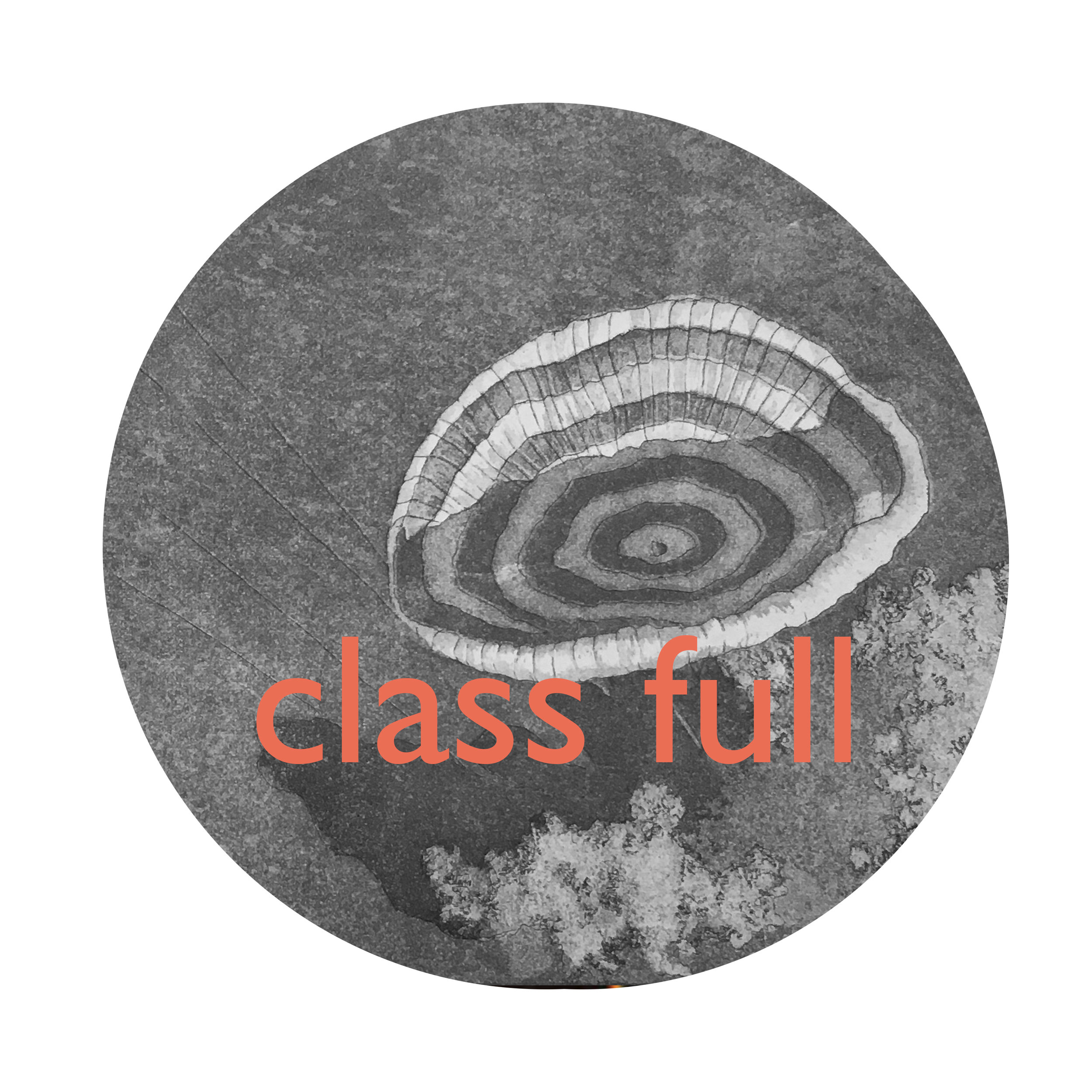 Colour etching_class full 2.jpg
