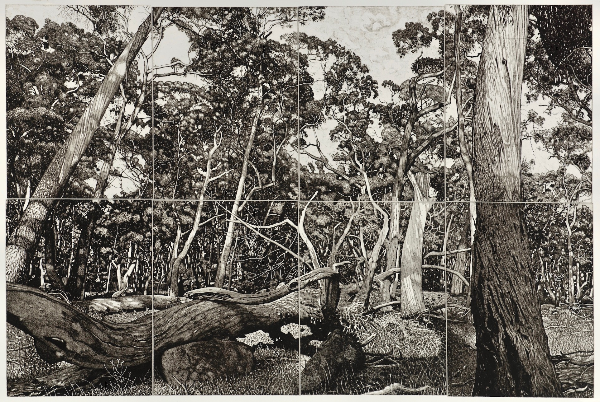 Highly Commended  DAVID FRAZER AUSTRALIA  Everybodys Talkin' , monotype and lithograph Represented by Australian Galleries and Beaver Galleries ACT