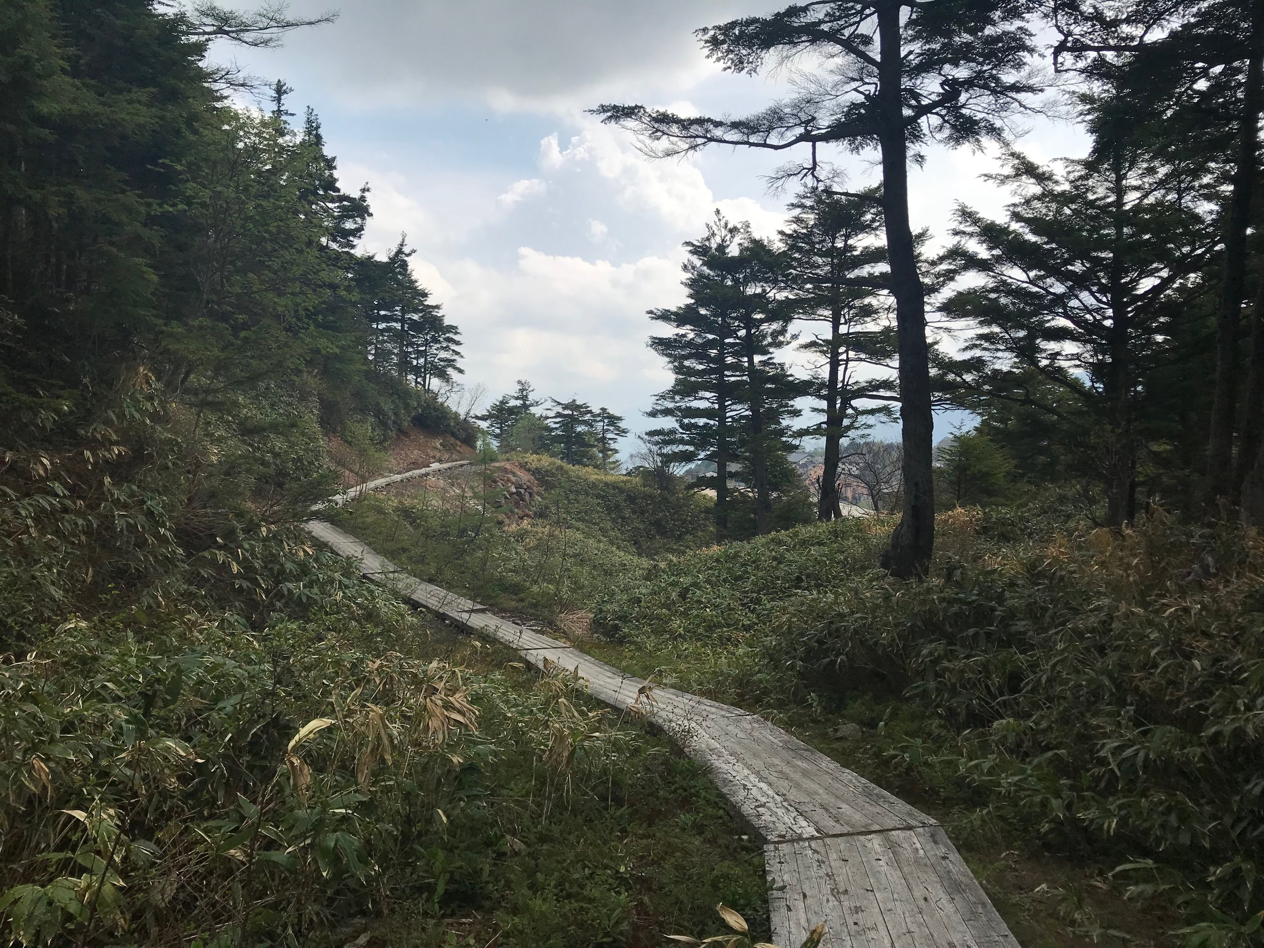 A hiking path leading away from the water field.