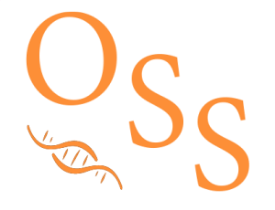 oss-branding-icon-300x230.png