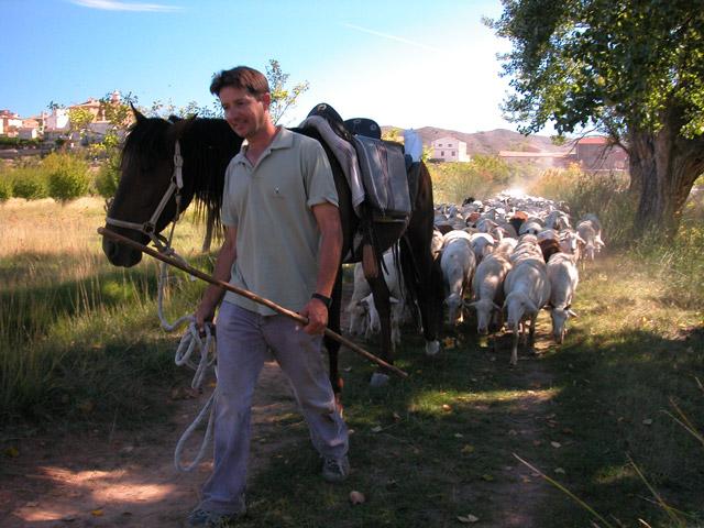 burro-carenas.jpg