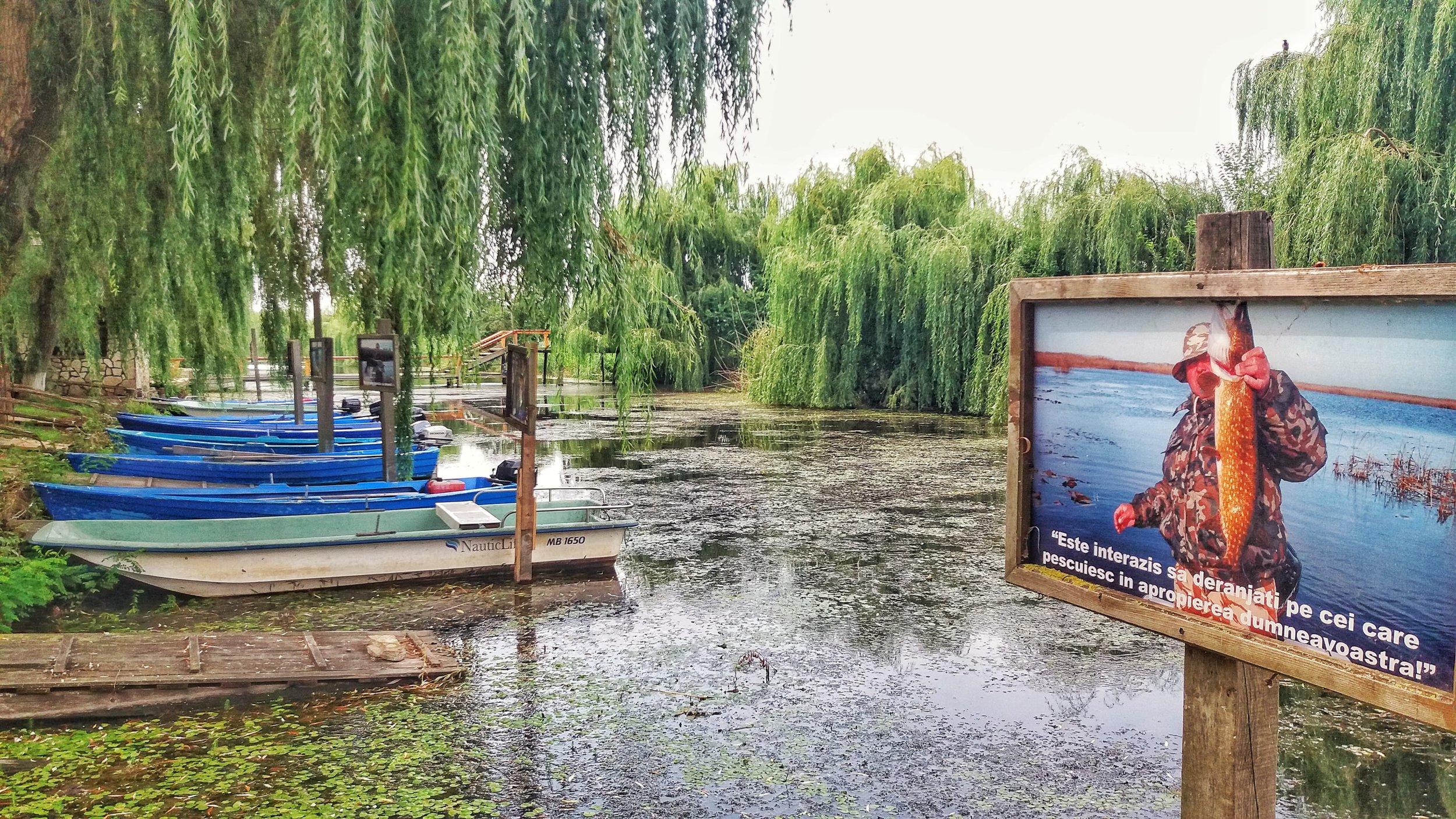 Pescuit la stiuca in Incinta Dunavat 1 -  Foto credit: Gogosse Photography