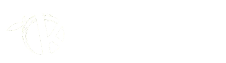 Self-serve-solution-logo2.png