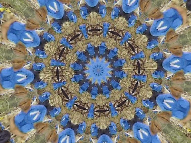 Blau 3
