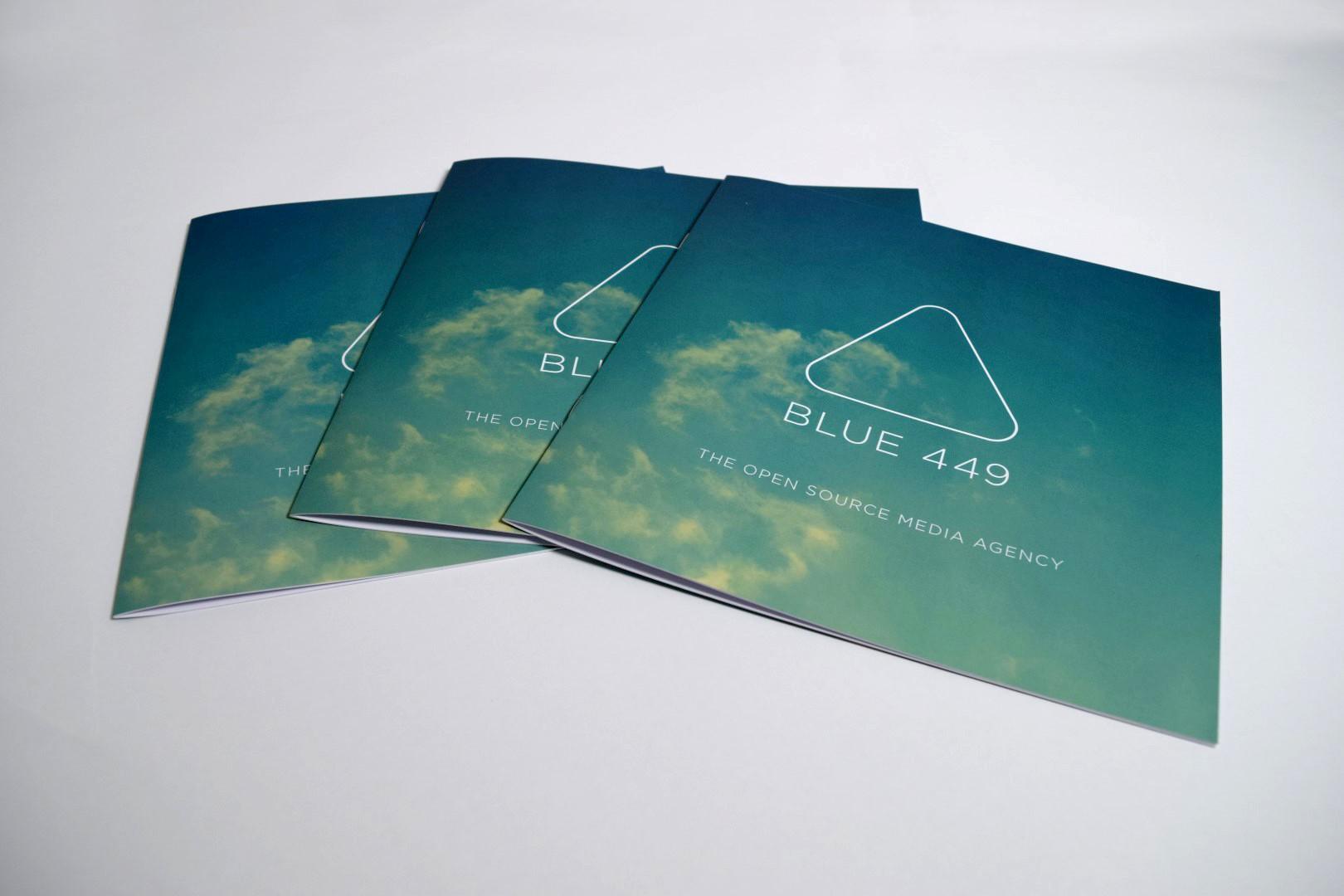 Blue 449 Brochure
