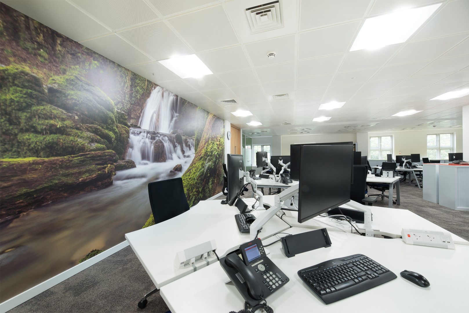 Printed Wallpaper Office Graphics