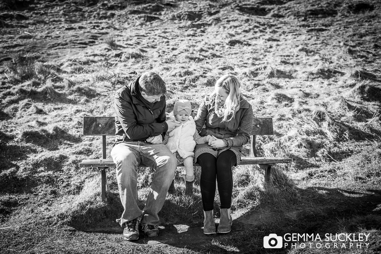 cow-and-calf-engagement-photos.JPG