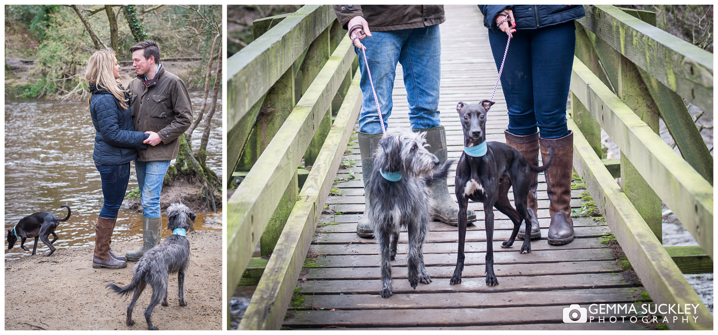 A couple with their dogs on their engagement shoot at Nidd Gorge
