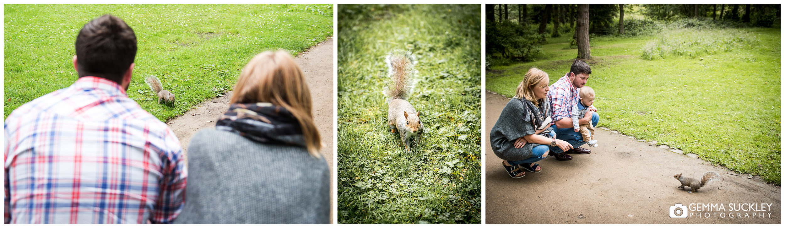 Couple and baby find the squirrels at Golden Are Park in Leeds
