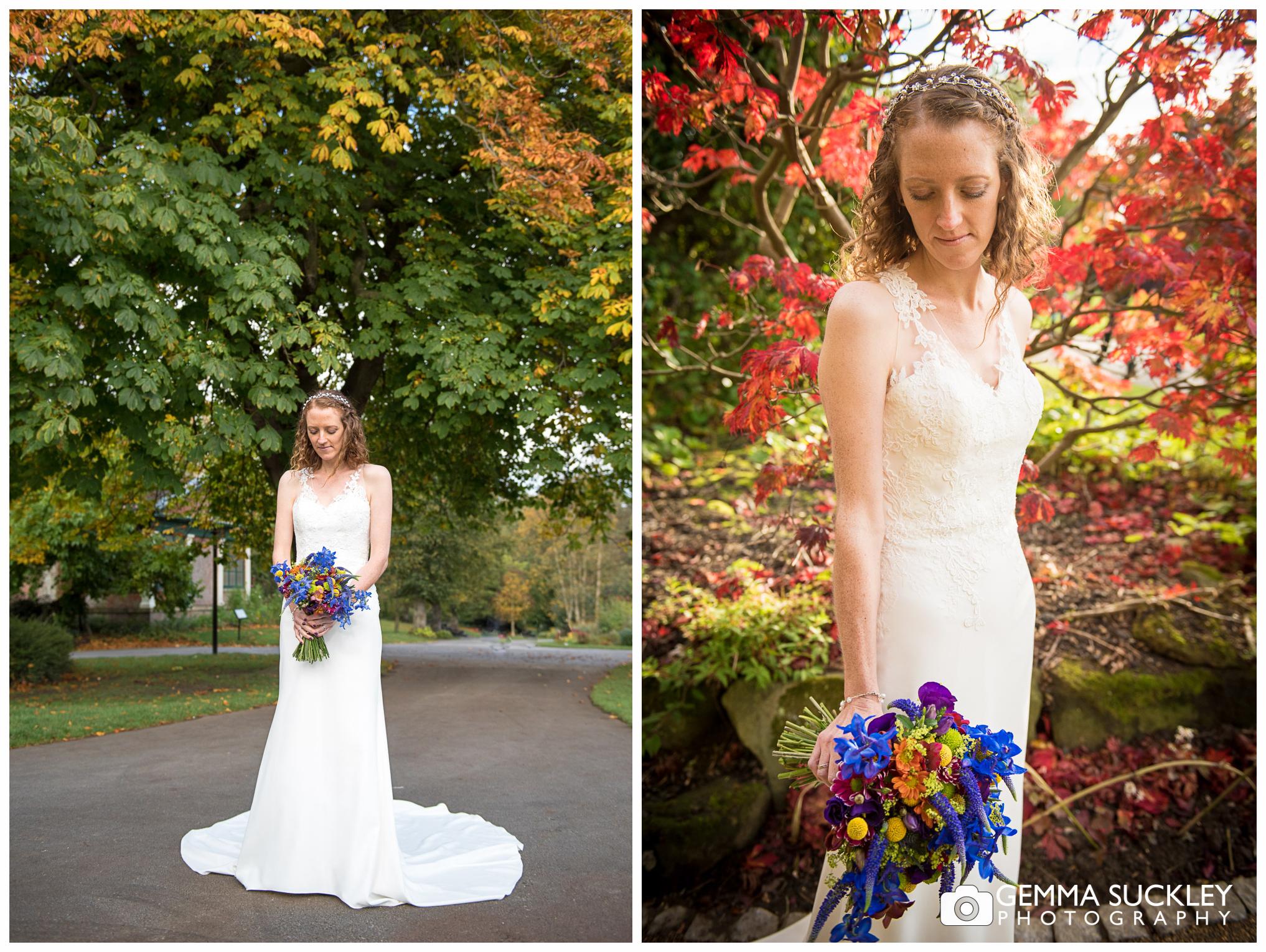 Autumn wedding photography in Valley Garden's in Harrogate