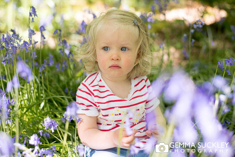 little girl sitting in the bluebells in bluebell wood in ilkley