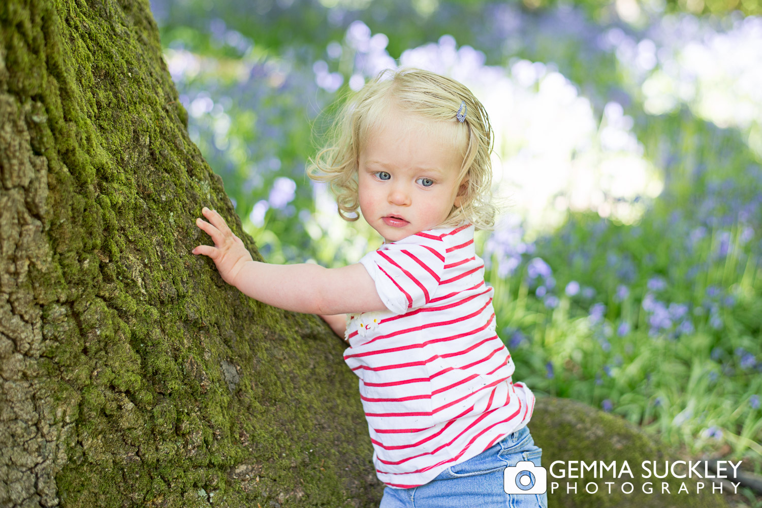little girl holding onto a tree in bluebell wood