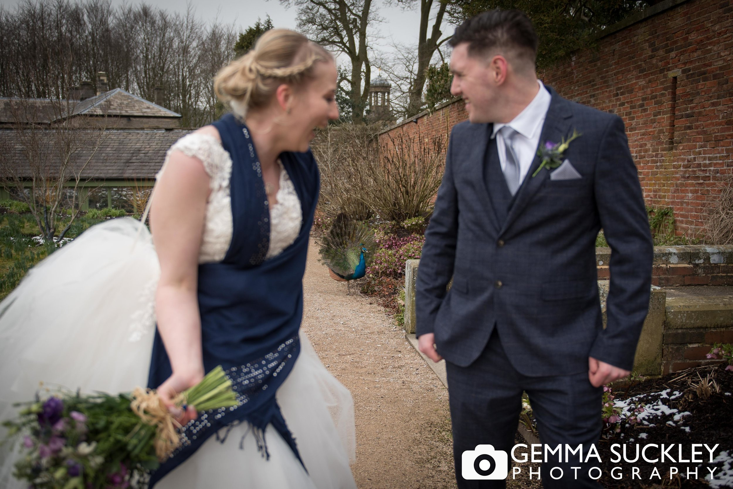 bride and groom with a peacock beind them at broughton hall