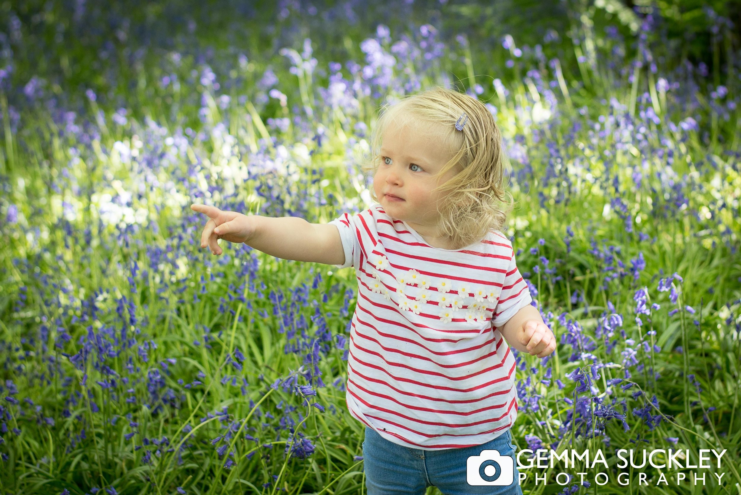 baby-photography-bluebell-wood.jpg