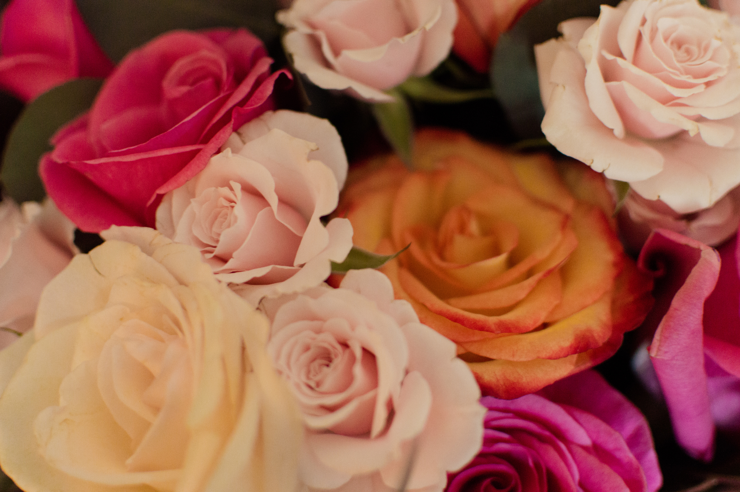 John and Jodie's Wedding-Rose Bouquet.jpg