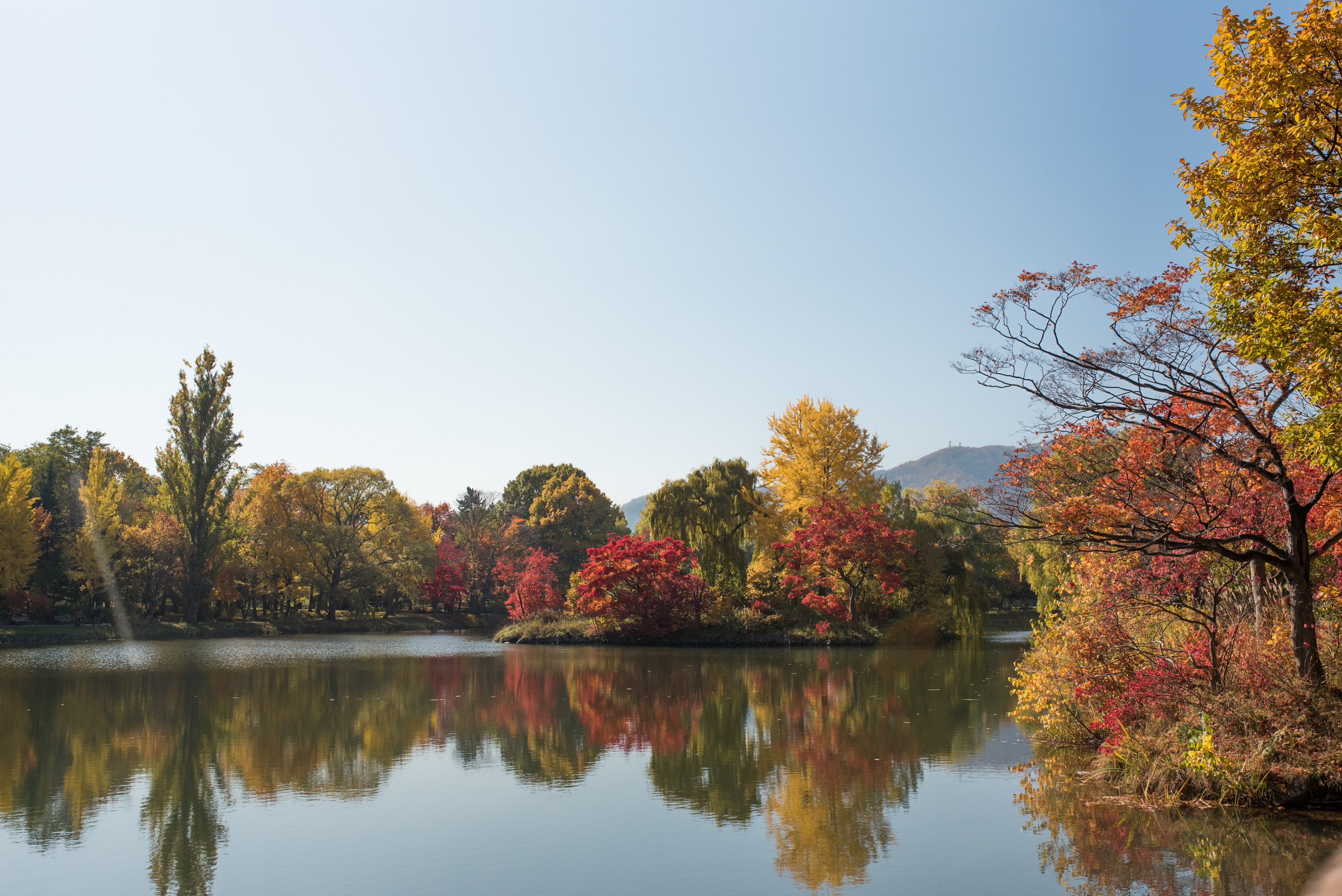 Sapporo Day 1-7945.jpg