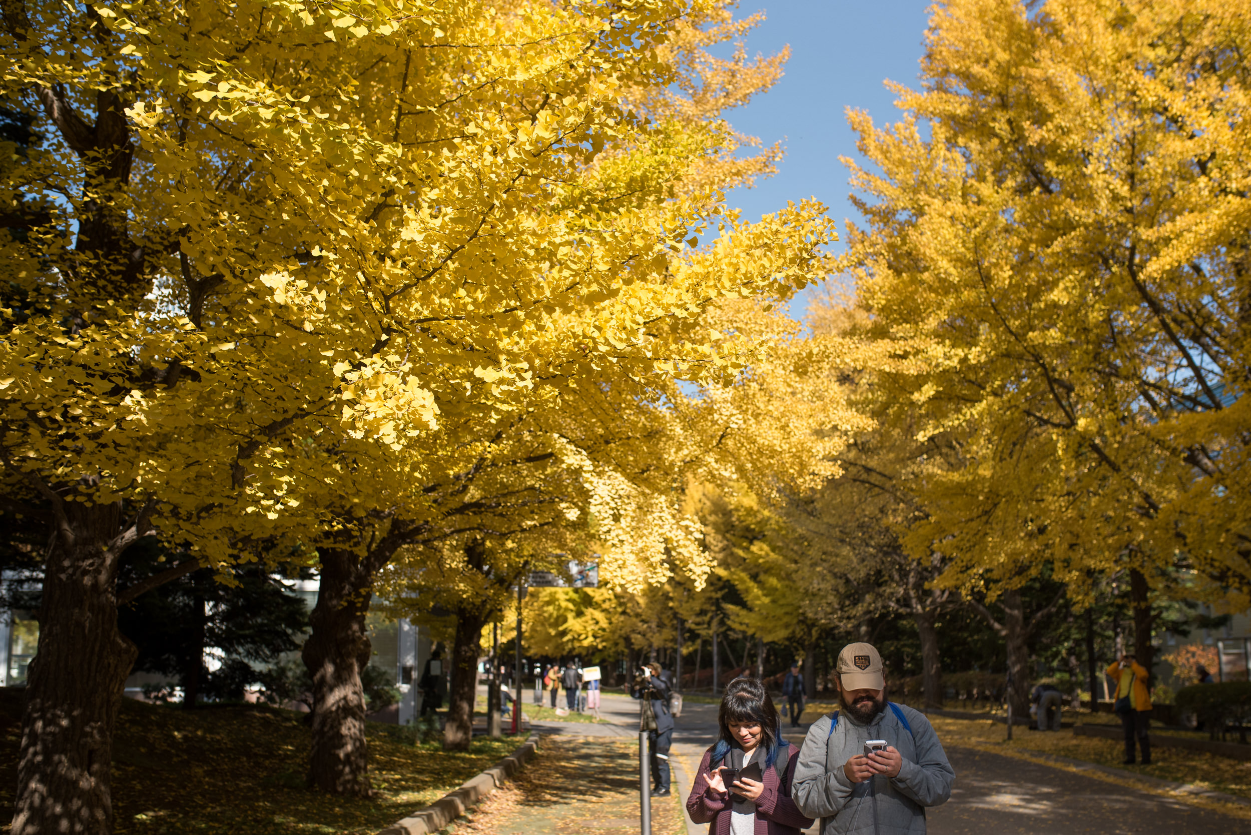 Sapporo Day 1-7937.jpg