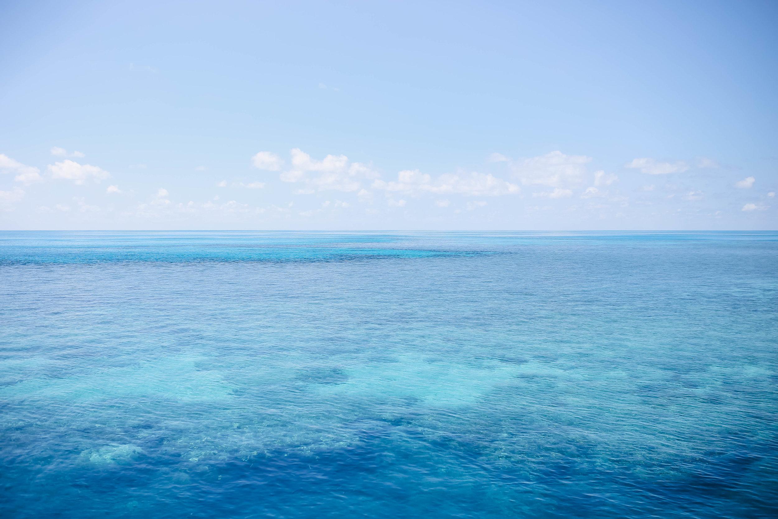 Great Barrier Reef Snorkeling (10 of 22).jpg
