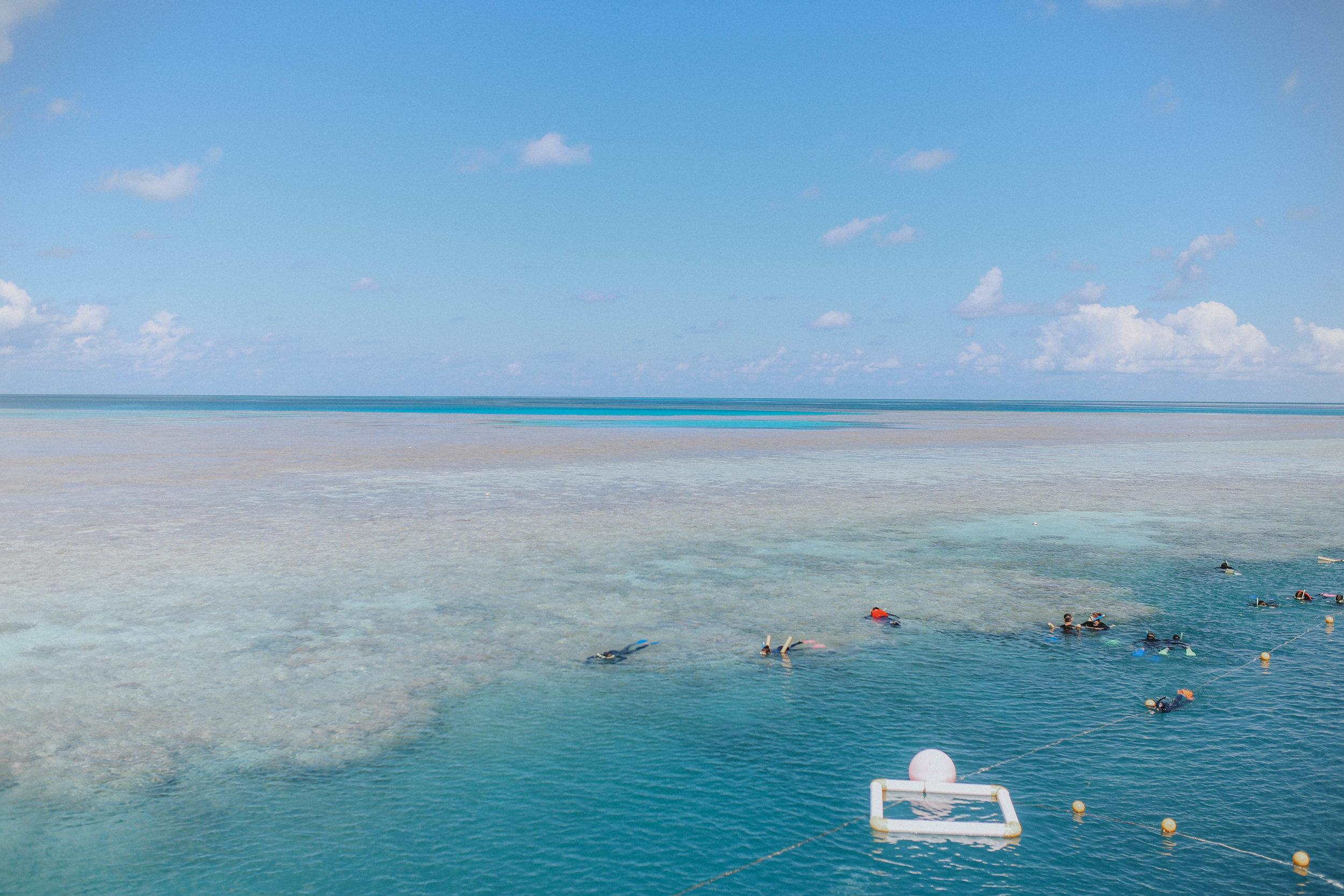 Great Barrier Reef Snorkeling (25 of 22).jpg