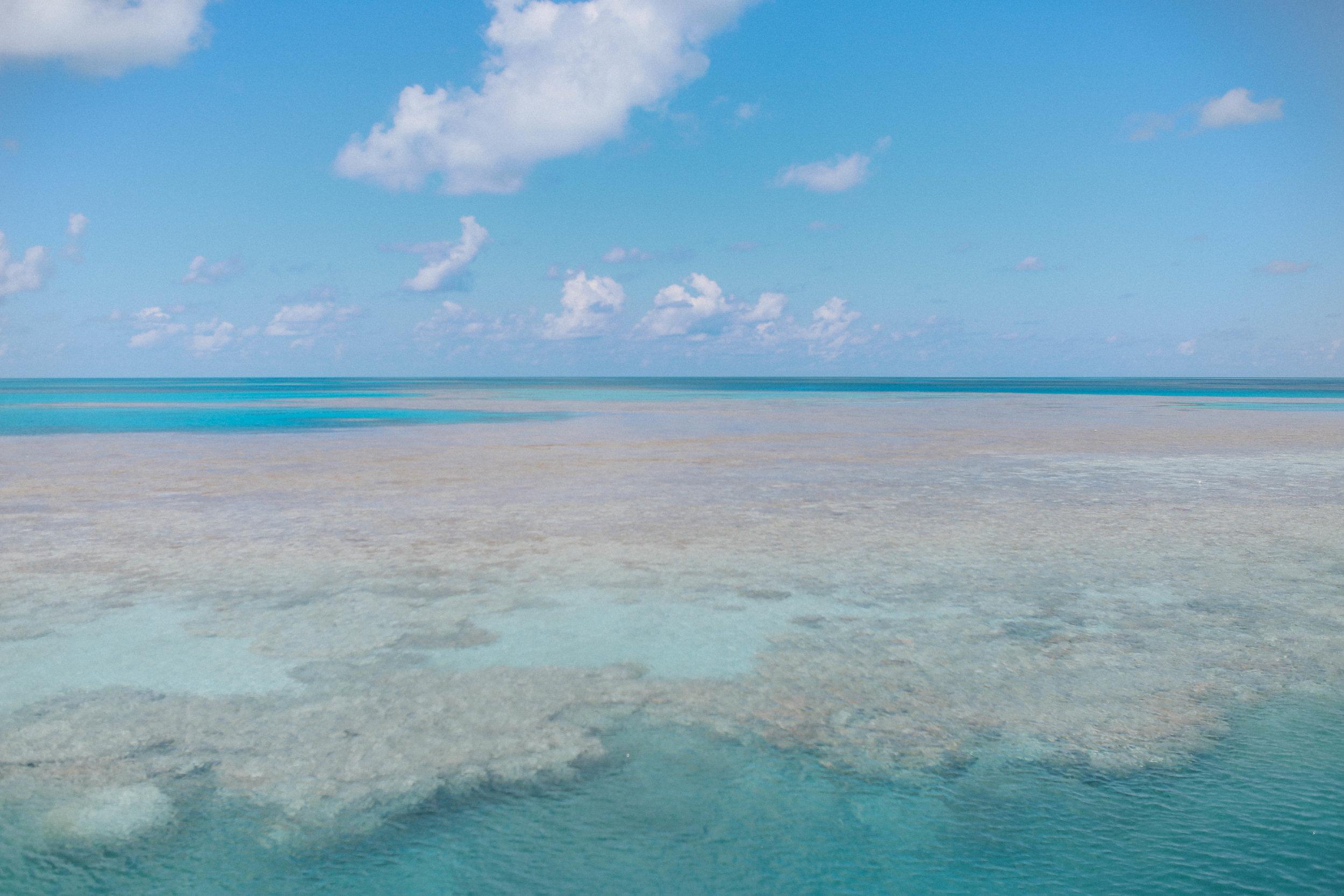 Great Barrier Reef Snorkeling (26 of 22).jpg