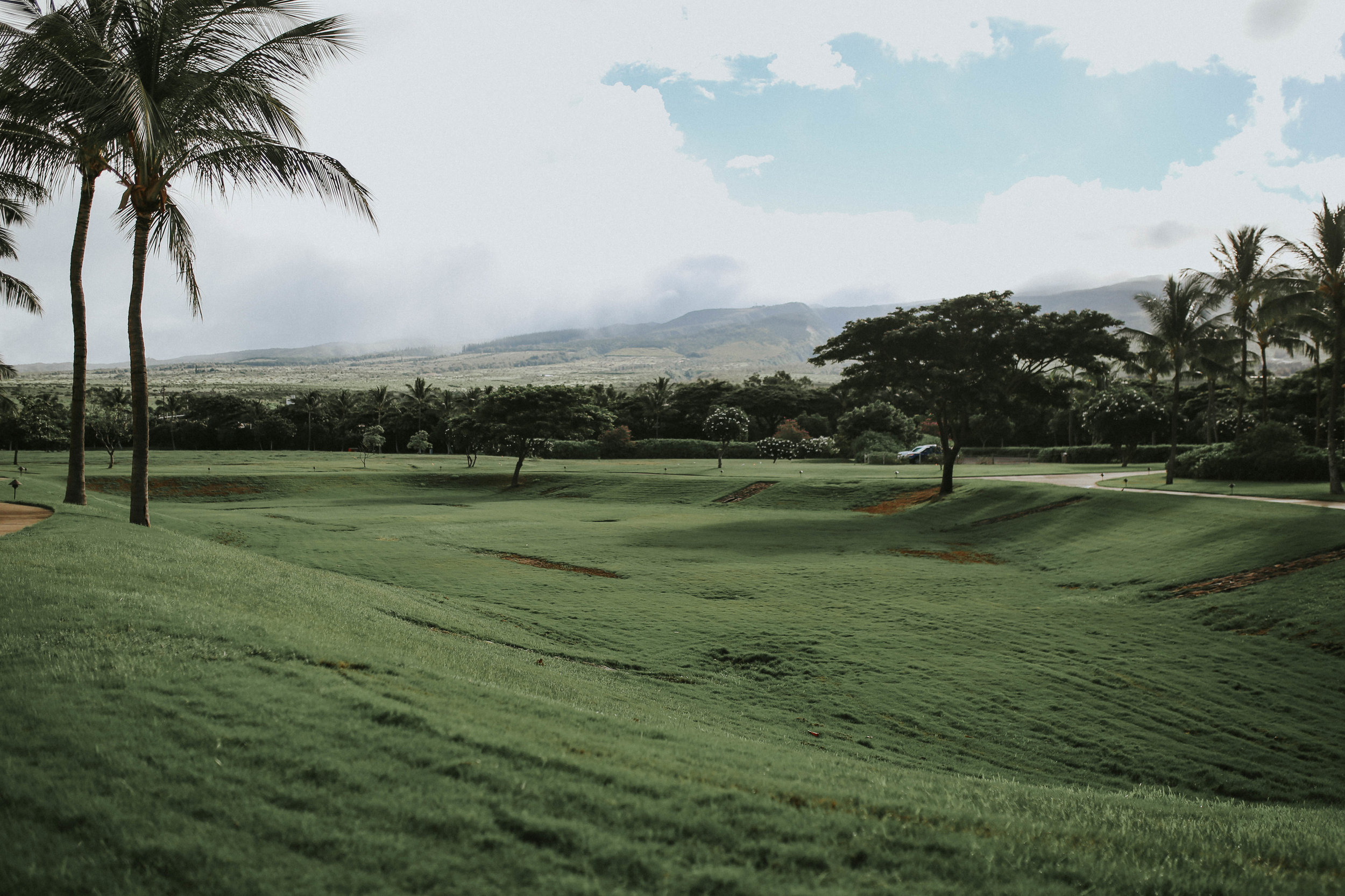Hawaii-4-2.jpg