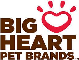 BIG HEART.jpeg