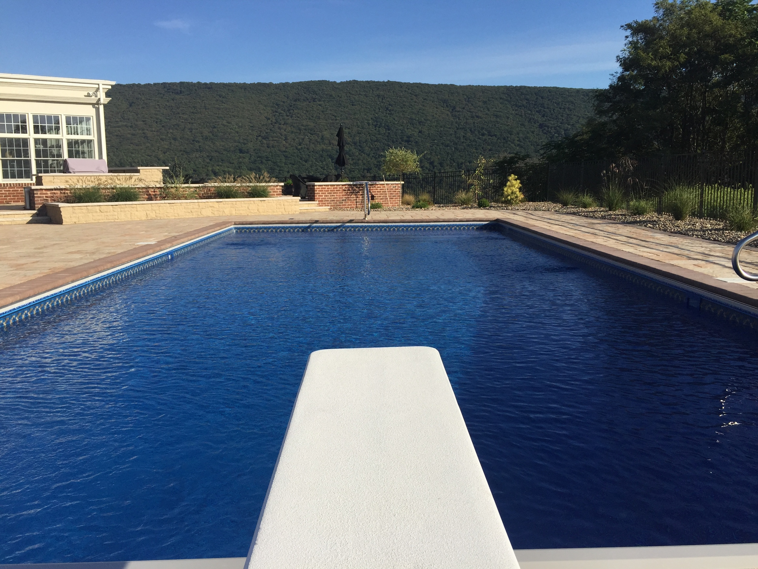 Diving Board with Custom Pool