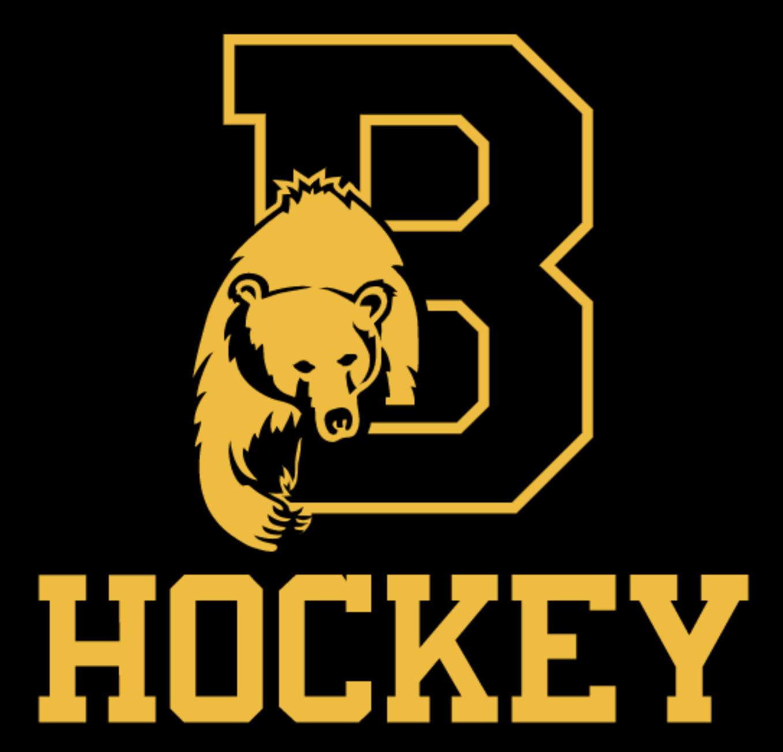 Brunswick Hockey 2020