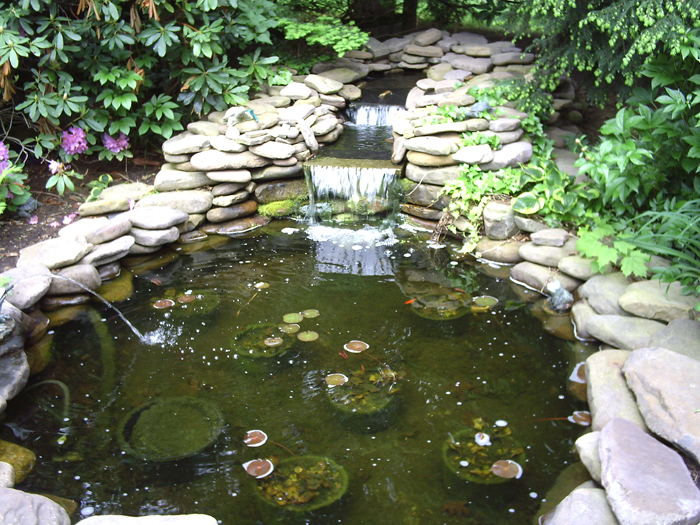 Tharpe Watergardens003.JPG