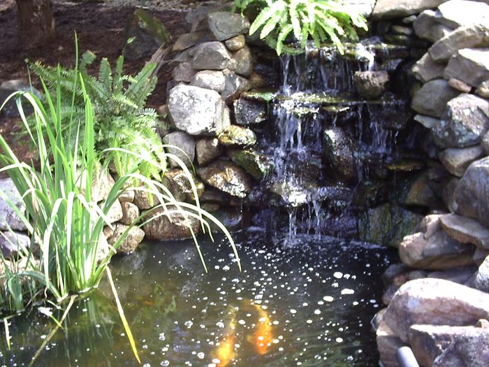 Tharpe Watergardens010.JPG