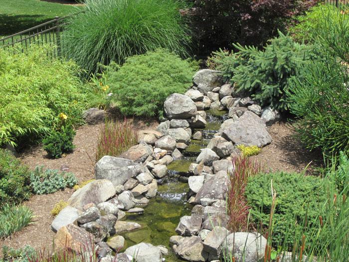 Tharpe Watergardens013.JPG
