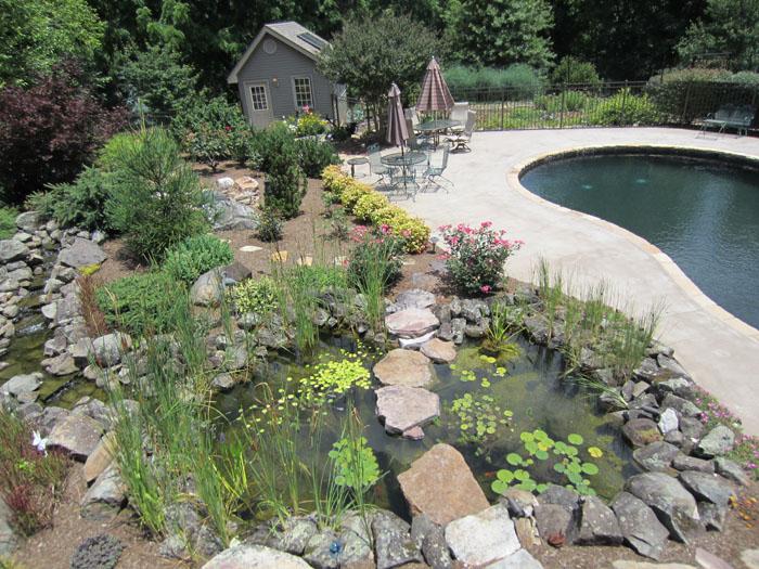 Tharpe Watergardens014.JPG