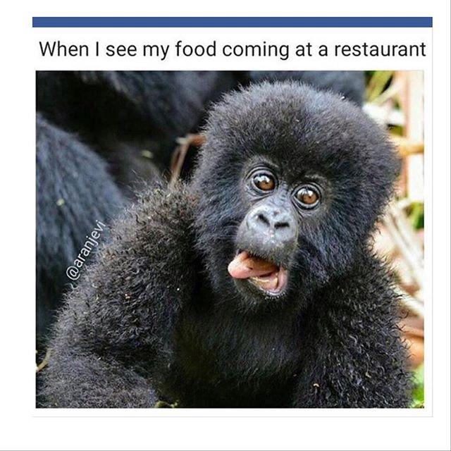 new food menu got us like #damn