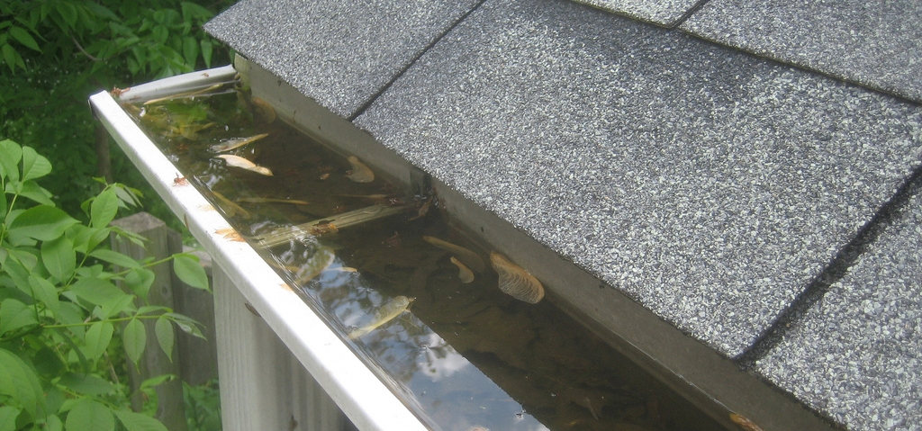 Gutter Cleaning in Southern Wisconsin