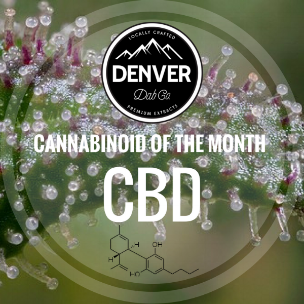 CBD - Cannabinoid of the Month - Denver Dab Co.