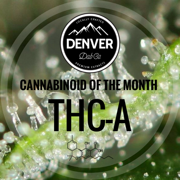 THC-A - Cannabinoid of the Month - Denver Dab Co.
