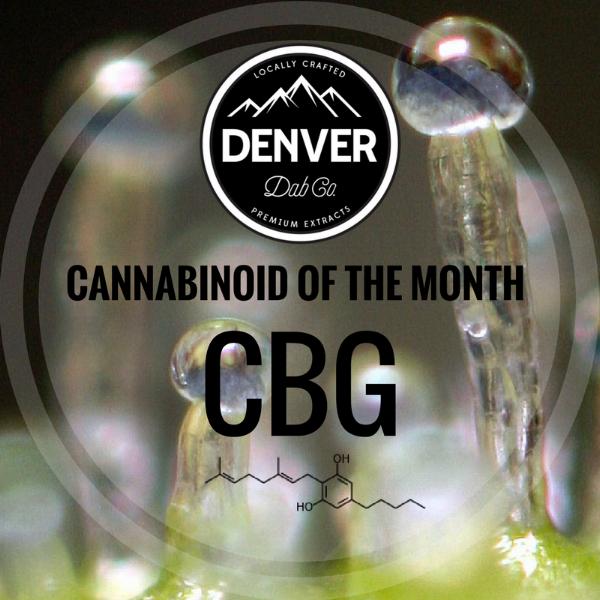 CBG - Cannabinoid of the Month - Denver Dab Co.