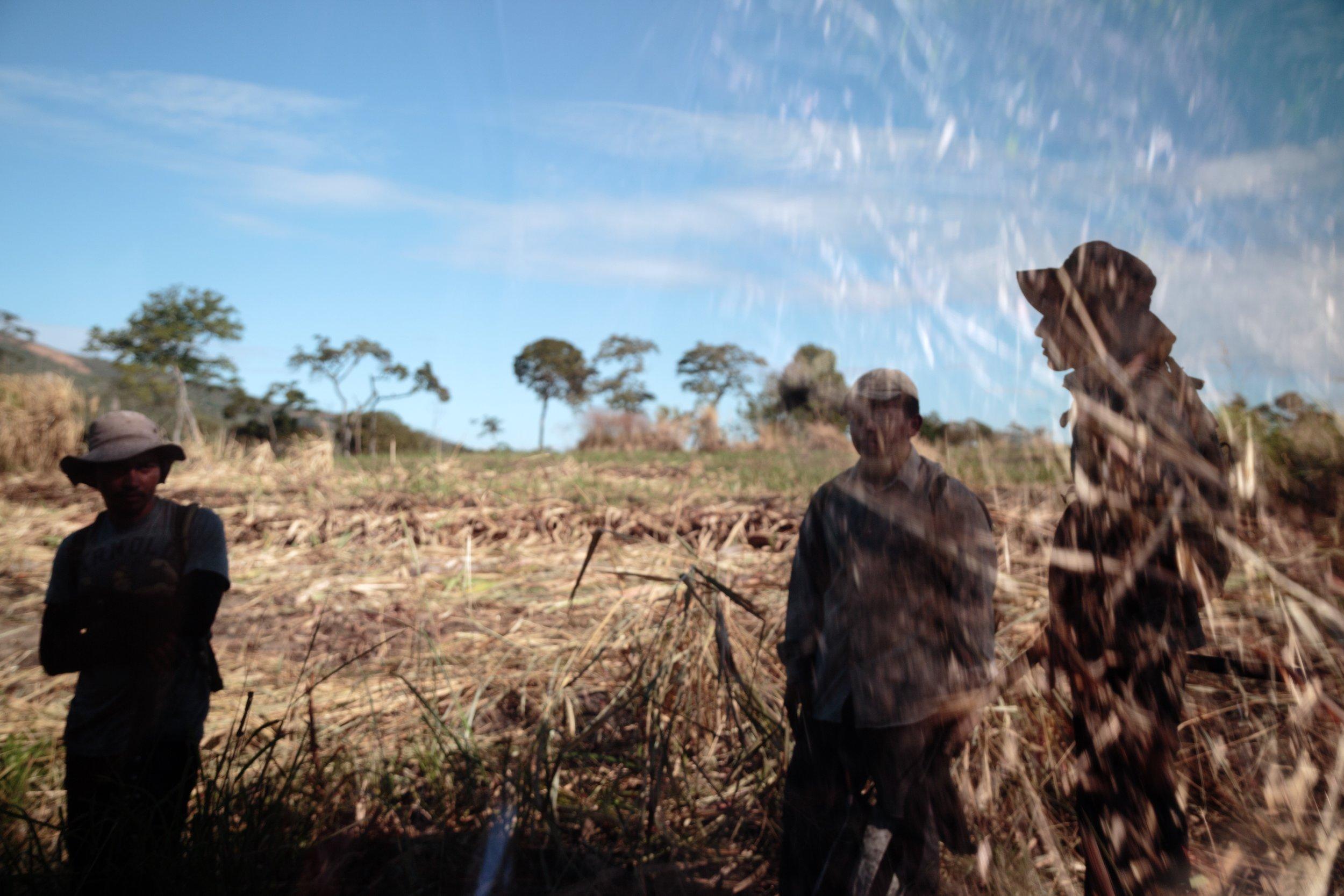 Sugarcane workers take a break in the fields of El Angel Sugar Mill outside of Suchitoto, El Salvador on Jan. 13, 2015.