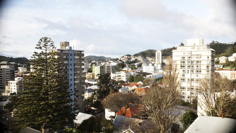 Wellington, New Zealand / July 12 2019.