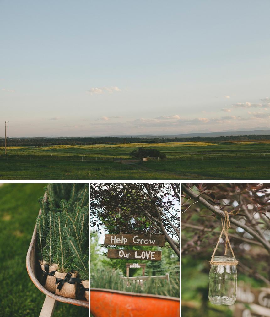 Alberta Prairies Outdoor Wedding