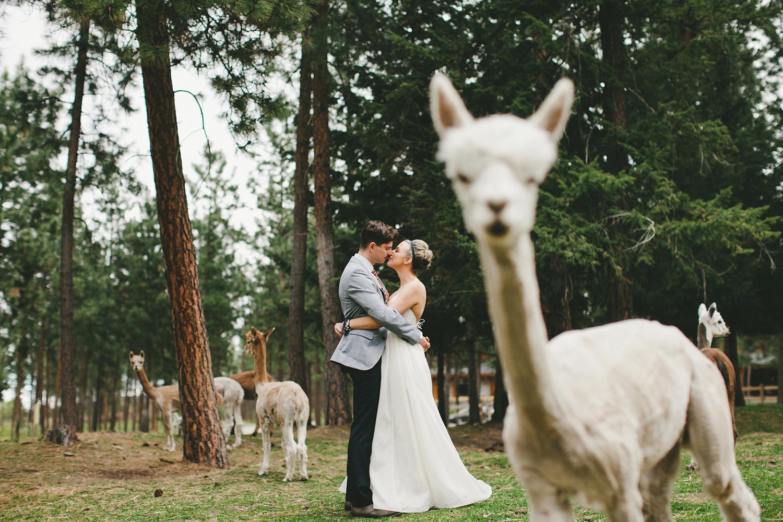 010-vancouver-international-wedding-photographers.jpg