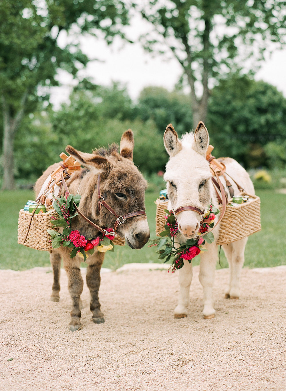 Yes, you can have miniature donkey bartenders at weddings in Texas. Vote for best dressed, I think so!