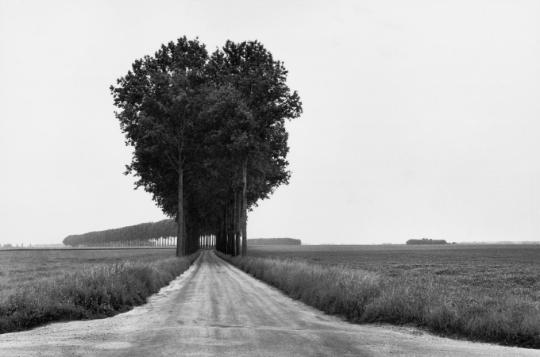 Henri Cartier-Bresson; 'Brie, France', 1968