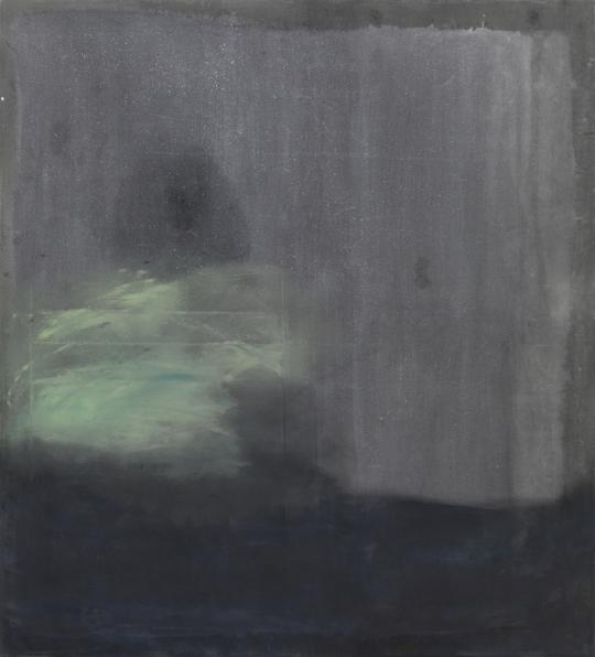 Sergej Jensen; 'Master of Color', 2011
