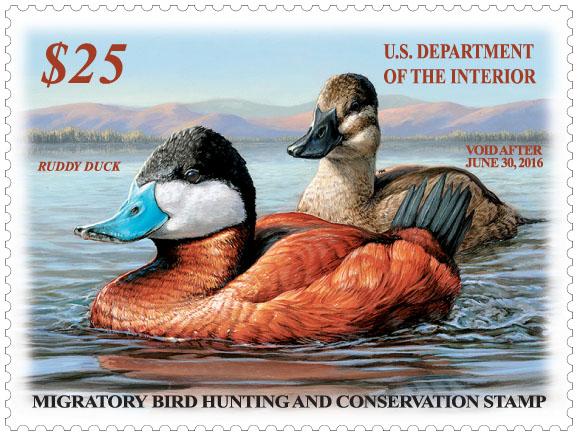2015-2016 Federal Duck Stamp.jpg