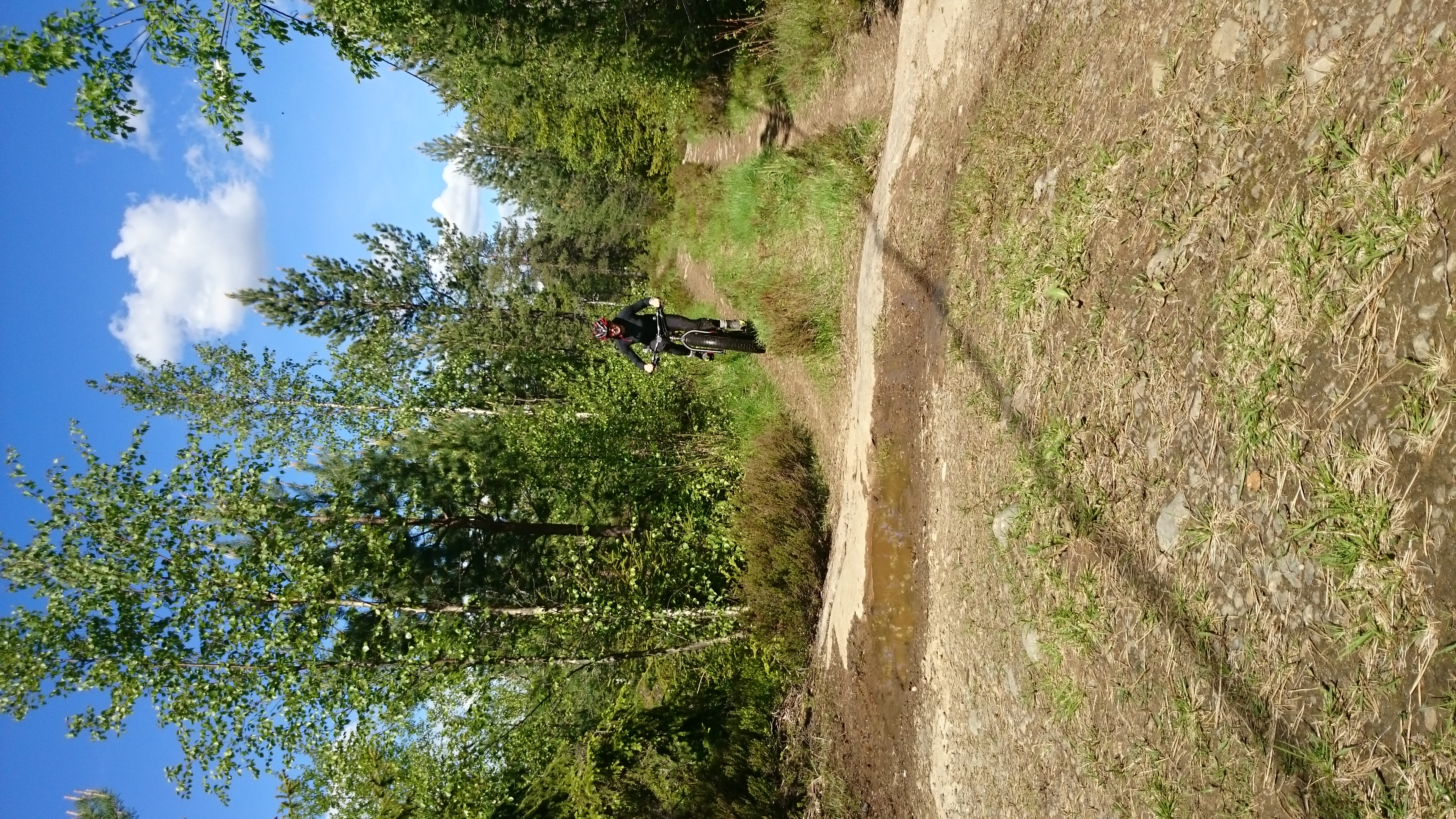 Herlig tur med fatbiken i skogen. Må jo ha det gøy også ;-)